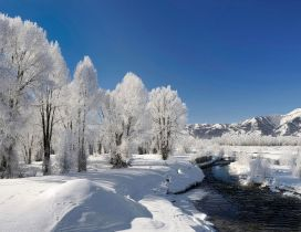 Frozen river - beautiful white winter landscape