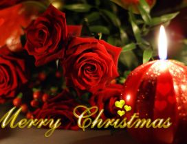 Red roses on a beautiful day of Christmas