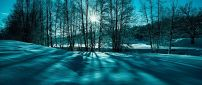 Blue and green winter light - HD wallpaper