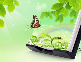 Magic book - nature and butterfly