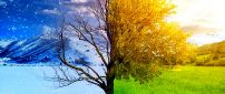 Winter and spring - two beautiful seasons