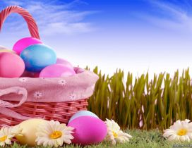 Basket full with Easter eggs - HD wallpaper