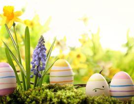 Easter eggs hiding in the garden