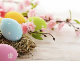 Special spring moments - Easter Holiday