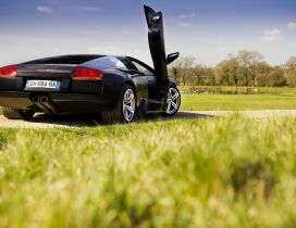Dark Lamborghini in the nature - Beautiful spring day