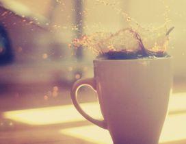 Splash - good morning coffee time