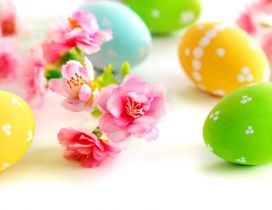 Spring flowers and Easter eggs - Happy Holiday