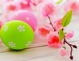 Blossom tree branch and colourful Easter eggs - HD wallpaper
