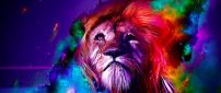 Wild animal - colourful leon