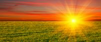 Golden sun over the green field - HD nature wallpaper