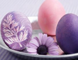 Original painted eggs - color art