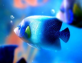 Big blue fish under the water - HD wallpaper