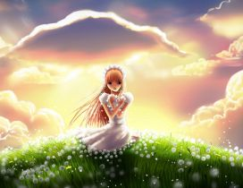 Anime bride on a field full with dandelions - HD wallpaper