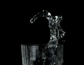 Splash in a glass of water - HD wallpaper