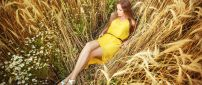 Relaxing time in the golden wheat field - HD wallpaper