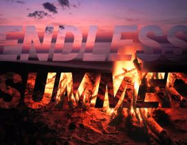 Bonfire on the beach - Endless summer