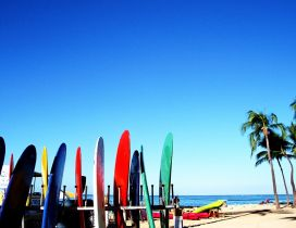 Colored surfboards at the beach - summer sport on the water