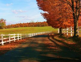 Country path - Wonderful Autumn season