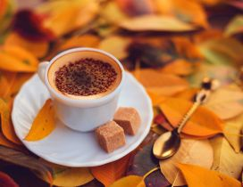 Delicious coffee with brown sugar - Autumn day