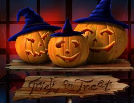 Trick or Treat - Funny pumpkins with hats on Halloween night