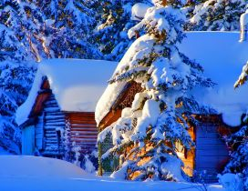 Wood cottage full with snow - wonderful winter season