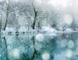 Mirror in the lake - Winter season