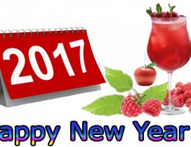 Happy New Year 2017 with a glass of raspberry juice
