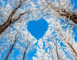 Blue heart on the sky - HD Winter wallpaper