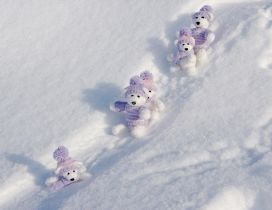 Sweet little fluffy bears at the sleighing - HD winter time
