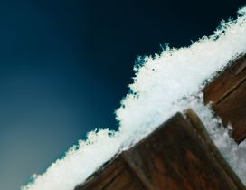 Macro ice on a piece of wood - Blue background