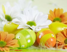 Spring color on flowers and Easter eggs - HD Holiday
