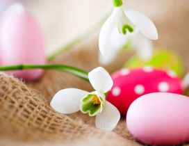 Snowdrops and colorful Easter eggs - Happy Spring Holiday