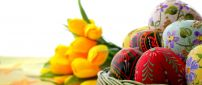 Colorful Easter eggs and yellow tulips on background