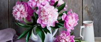 Wonderful pink flowers - Vintage objects on a wallpaper