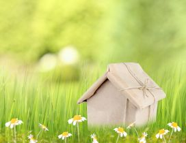 Small house gift and spring flowers - HD wallpaper