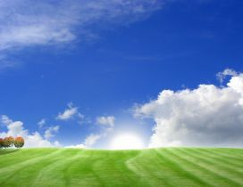 Blue sky and green field - Wonderful summer HD wallpaper