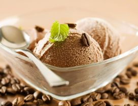 Fresh and sweet dessert - Coffee ice cream and mint