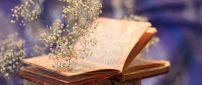 Summer flowers flying from a book - HD wallpaper