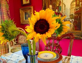 Three sunflowers in a vase in an old kitchen
