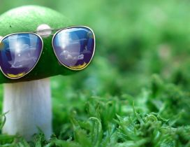 Creative wallpaper - Mushroom with sunglasses