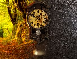 Time in nature - Old Clock on the tree - Autumn season