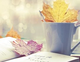 Read a wonderful book and drink a cup of hot tea in Autumn