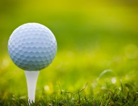 Small golf ball on the green field - HD sport wallpaper