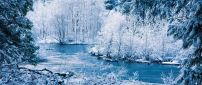 Amazing blue and white frozen nature - Cold winter season