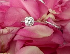 Silver ring and pink rose petals - Happy Valentines Day