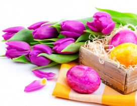 Colorful holiday in Spring season - Happy Easter eggs