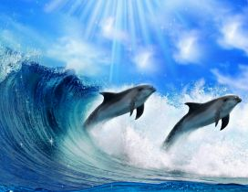 Inteligent animals -Dolphins play in the water jump in waves