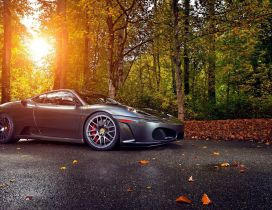 Luxury car in the forest - Autumn sun and leaves