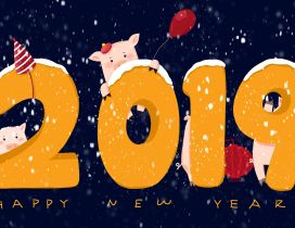 Chinese pig year 2019 - Happy New Year