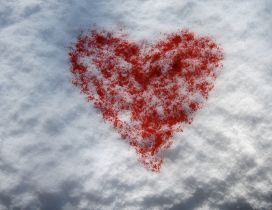 Red heart on the white snow - Happy Valentine's Day